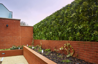 Green roofs Hampstead7